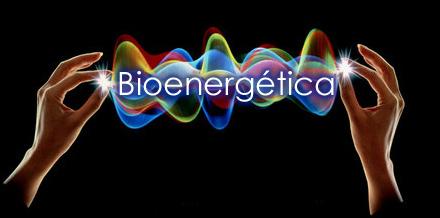 bioenergetica-2